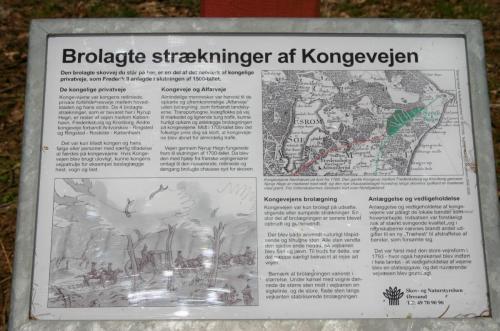 Den gamle kongevej i Nyrup Hegn ved Helsingør